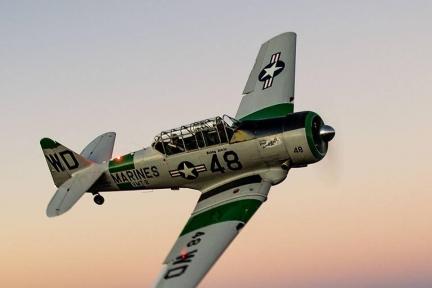 Hammerhead Aeronautical